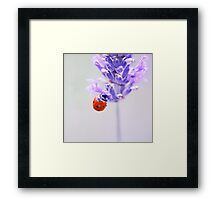 I thought that summer had passed me by Framed Print