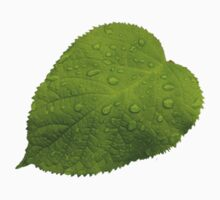 Green Leaf with Rain Kids Clothes