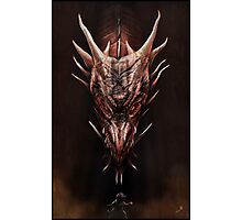 Smaug And The Thief Photographic Print