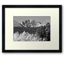 Longs Peak Autumn Aspen Landscape View BW Framed Print