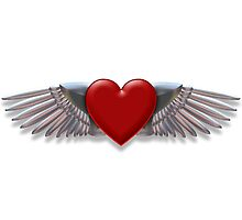 Heart with chromed wings illustration by creativedesignz