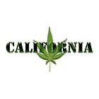 California marijuana illustration by creativedesignz