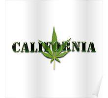 California marijuana illustration Poster