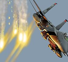 F-15 Strike Eagle by Wildi