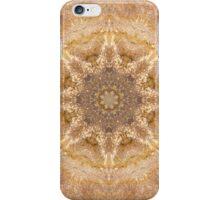Garden Stone Mandala 5 iPhone Case/Skin