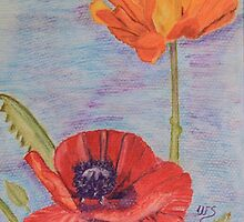 Two Poppies by Wendy Sinclair
