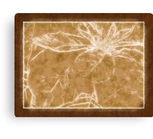 Mottled Red Poinsettia 1 Ephemeral Outlined Brown Canvas Print