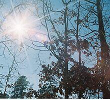Solar Flare by Jonathan Lynch