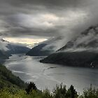 DOF on the Sognefjord  (2) by Larry Lingard/Davis