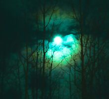 Full Moon on a Cold Night by Betty MacRae