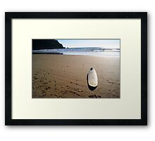 Afternoon Session Framed Print