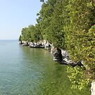 Cave Point, Door County, WI by Elizabeth Bravo