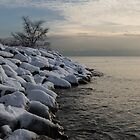 Clearing Snowstorm - Lake Ontario, Toronto, Canada by Georgia Mizuleva