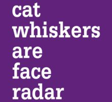 Cat Whiskers Are Face Radar by nathaylee