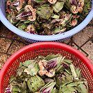 Artichokes, markets, Dalat, Vietnam by Glen O'Malley