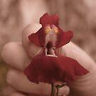 Monster Flower by Alterego84