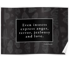Emotional Insects Poster