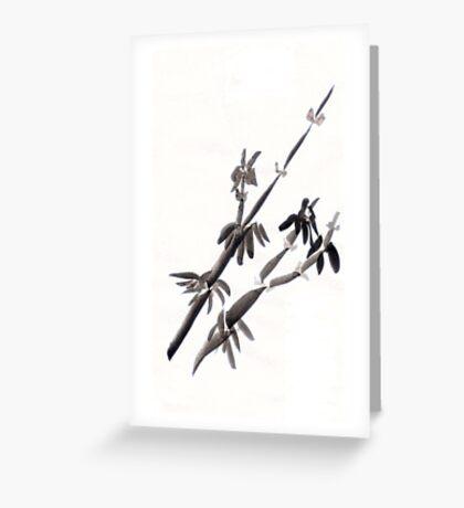 Test2: bamboo Greeting Card