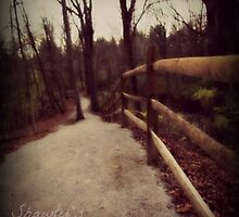 Fence Line by Josie-Traylor