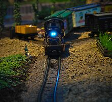 Toy Train IV ~ Miniatures Series  by Jeanie93