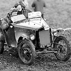 Fun in the Mud!! by Paul Woloschuk