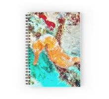 Orange Caribbean Sea Horse Spiral Notebook