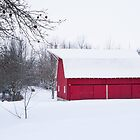 Little Red Barn on a Snowy Morning by Mike Koenig