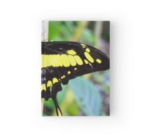 Black and Yellow Butterfly Hardcover Journal