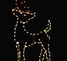 Twinkler, The Other Reindeer by Bob Wall