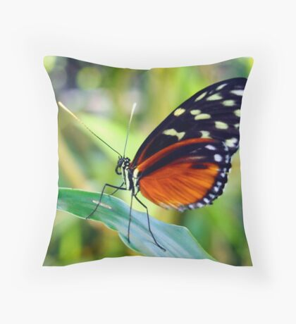 Macro Orange and Black Butterfly Throw Pillow