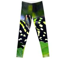 Green and Yellow Spotted Butterfly Leggings