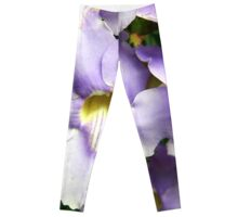 Purple and Yellow Flower Blooms Leggings