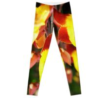 Tropical Yellow Hanging Flower Leggings