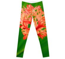 Red Hanging Flower Bloom Leggings