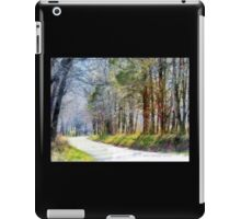 Country Road Through Forest iPad Case/Skin