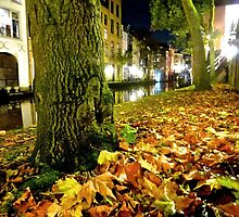 nightly leaves by annet goetheer