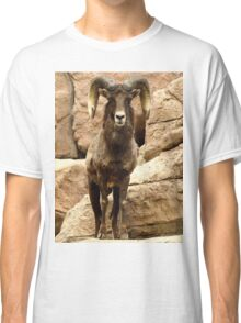 Big Horn Sheep Classic T-Shirt