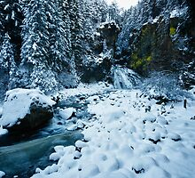 Winter scene snow in the forests and frozen creek of the Alps - color photo - Il Sangue dell'Inverno by visionitaliane