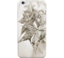 One Misty, Moisty Morning iPhone Case/Skin