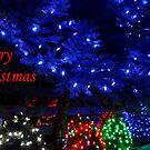 Merry Christmas Lights by Adam Bykowski