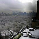 rooftop view of central park in snow december 2013 by Danny  Daly