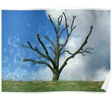 Trimmed Tree Poster
