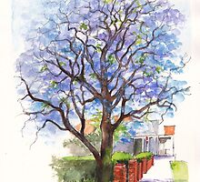 Jacaranda Tree at Christmas Time by Dai Wynn