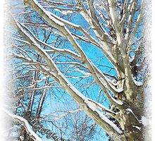 Snow Covered Holiday by SRowe Art