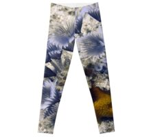 Blue Social Feather Dusters Leggings