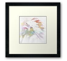 American Indian Framed Print