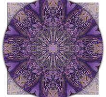 Crown Chakra Mandala 1c by haymelter