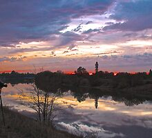 Sacramento River Winter Sunset by Barbara  Brown
