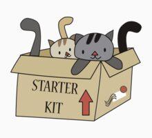 Crazy Cat Lady Starter Kit Kids Tee
