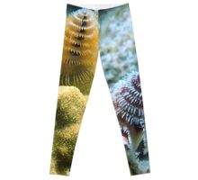 Pair of Colorful Christmas Tree Worms Leggings